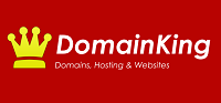 DomainKing Coupons